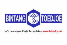 Photo of Lowongan Kerja PT Bintang Toedjoe Juli 2020