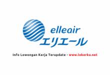 Photo of Lowongan Kerja PT Elleair International Manufacturing Indonesia 2020